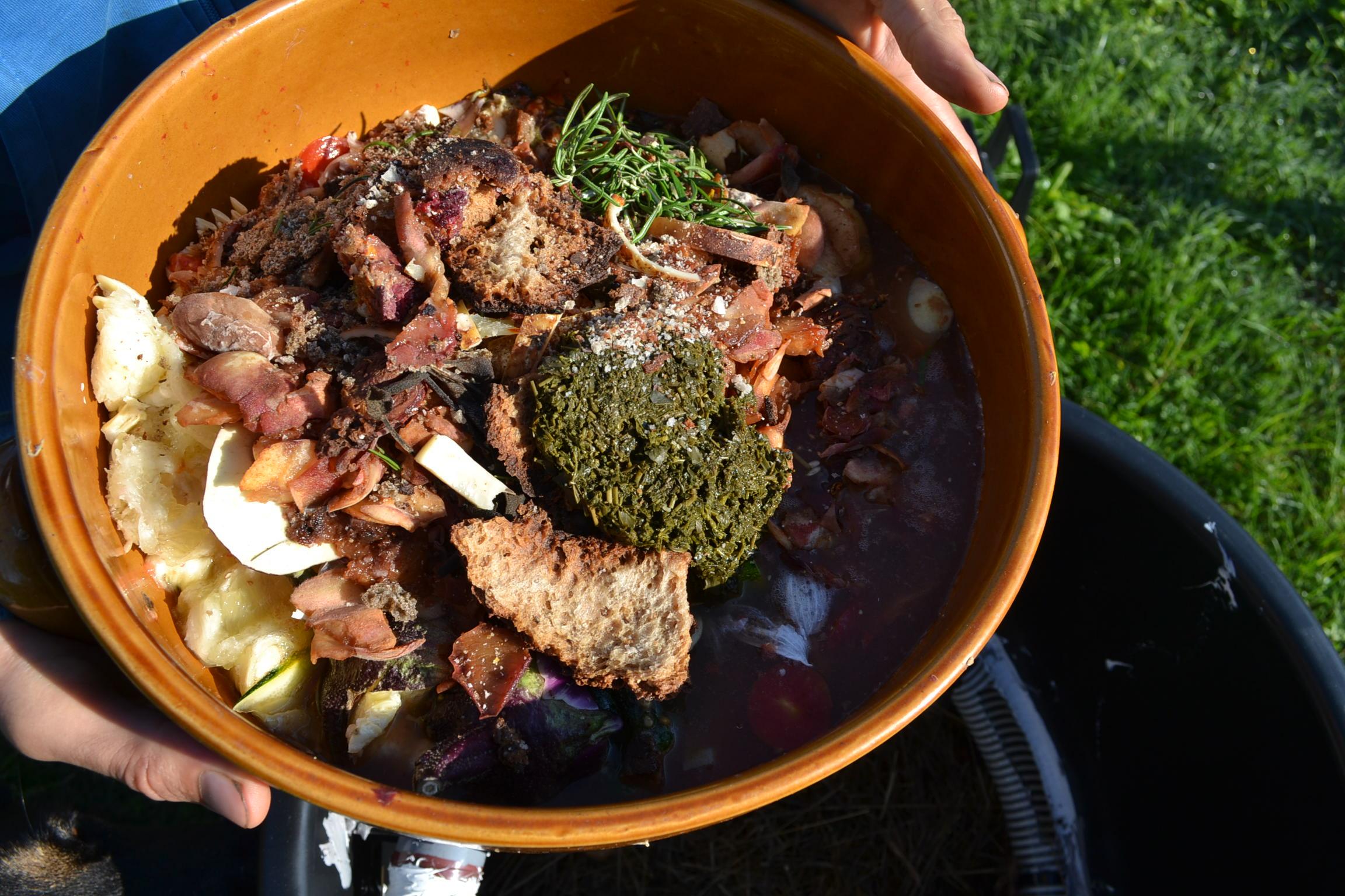 gamelle pleine de compost et déchets de cuisine organiques