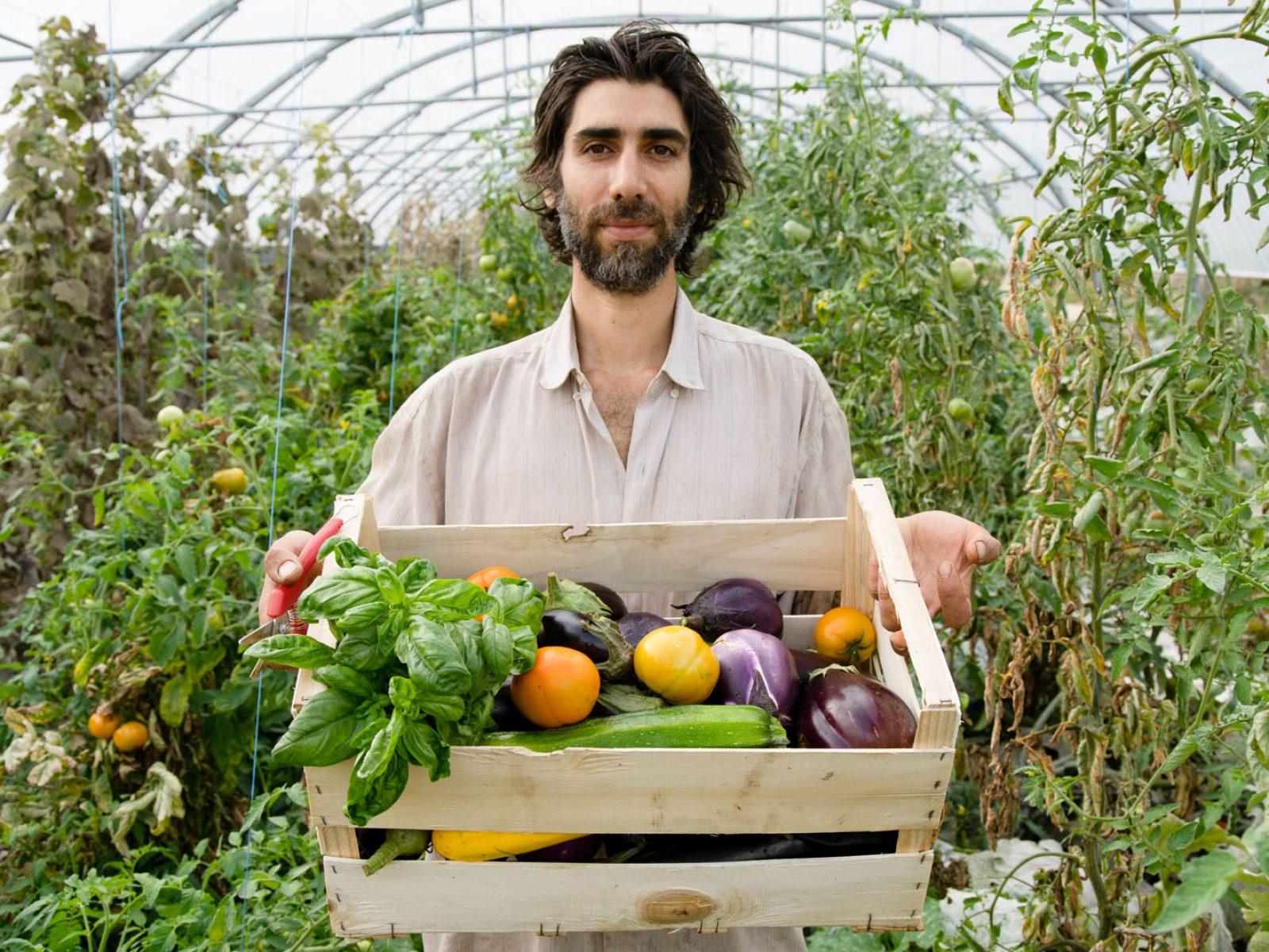 Benoît tenant une cagette pleine de légumes colorés